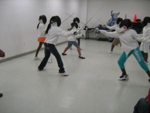 NFLYET Fencing