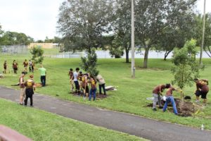 New Trees Planted at Gwen Cherry Park